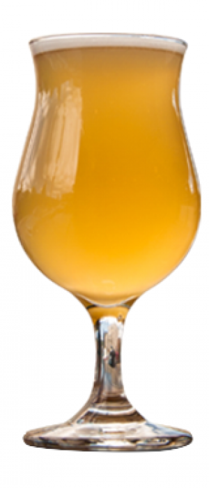 Co-conspirator Apricot Sour Ale by Revelation Craft Brewing Company in Delaware, United States