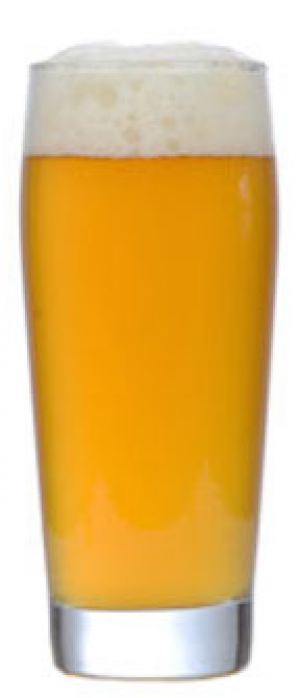 Twa Dogs Salut Saison by Victoria Caledonian Brewery & Distillery in British Columbia, Canada