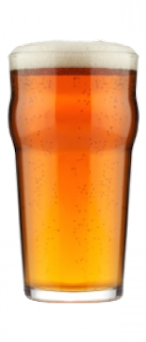 IPA by Seedstock Brewery in Colorado, United States