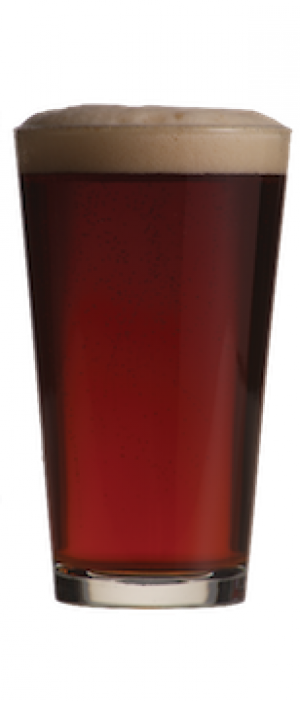 Bourbon Barrel Aged Irish Red