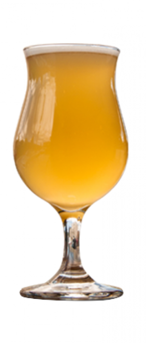 Sitka Sour by Île Sauvage Brewing in British Columbia, Canada