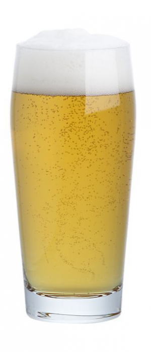 Smoke on the Lager by Hop Dogma Brewing Company in California, United States