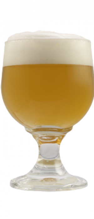 The Madam by Societe Brewing Company in California, United States