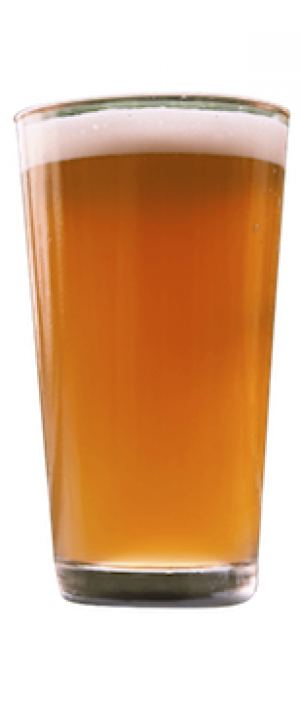 Equinox IPA by Springfield Brewing Company in Missouri, United States