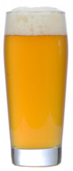 Precipitation Pilsner