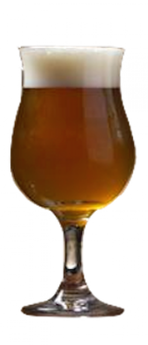 Stranded in a Barrel by Galveston Island Brewing in Texas, United States
