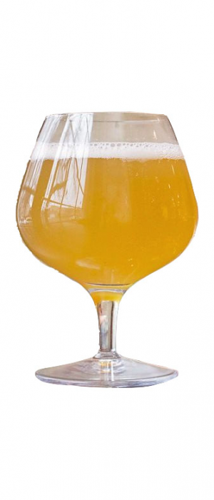 Syndicat Berliner Weisse with Passion Fruit by Île Sauvage Brewing in British Columbia, Canada