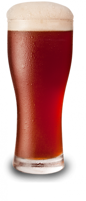 Ionic Irish Red Ale by [Theoretically]  Brewing Company Ltd. in Alberta, Canada