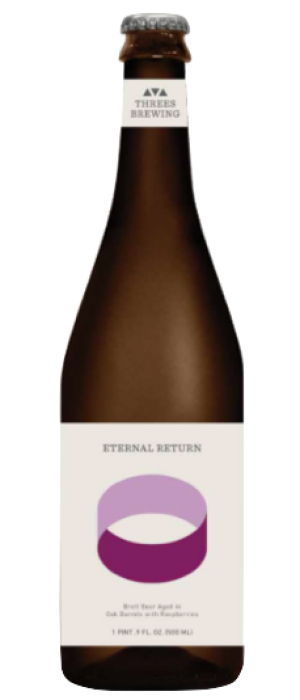 Eternal Return: Raspberry by Threes Brewing in New York, United States