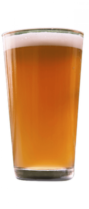 Toll Gate IPA by Route 40 Brewing & Distilling Co. in Maryland, United States