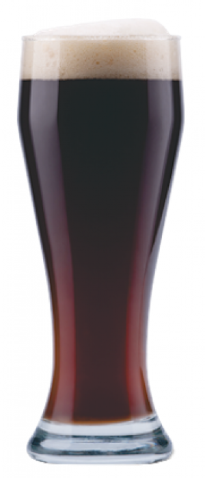 Meridian Dark Lager by Township 24 Brewery in Alberta, Canada