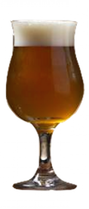 A2 Dubbel by Transmitter Brewing in New York, United States