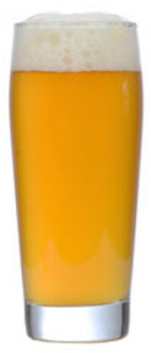 M1 Spiced Saison by Transmitter Brewing in New York, United States