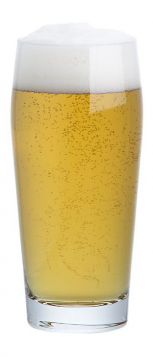 Trotwood Lager with Lime by Warped Wing Brewing Company in Ohio, United States