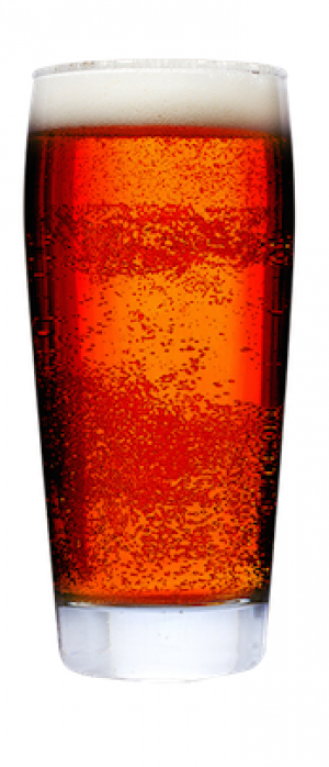 UB Amber Ale by Union Bear Brewing Co. in Texas, United States