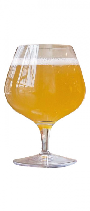 Gose by Väsen Brewing Company in Virginia, United States