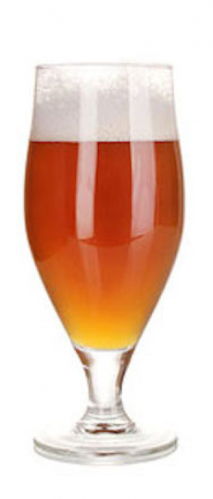 Vienna Lager by Grains of Wrath Brewing in Washington, United States