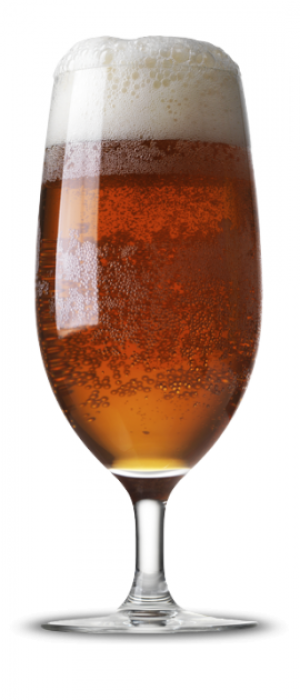 Wheel, Snipe, Celly by New Main Brewing Co. in Texas, United States