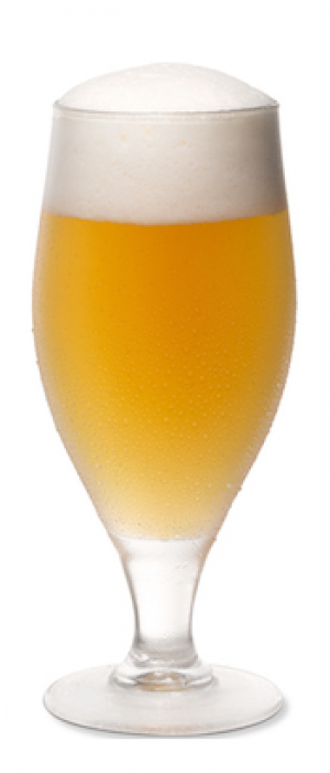 Wolk by Lock 27 Brewing in Ohio, United States