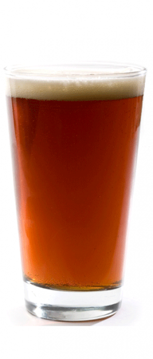 Northern Dark Session Lager by Wood Buffalo Brewing Co. in Alberta, Canada