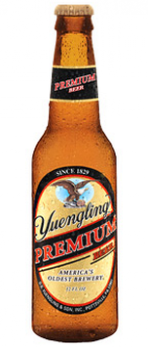 Yuengling Premium Beer by Yuengling Beer Co. in Pennsylvania, United States
