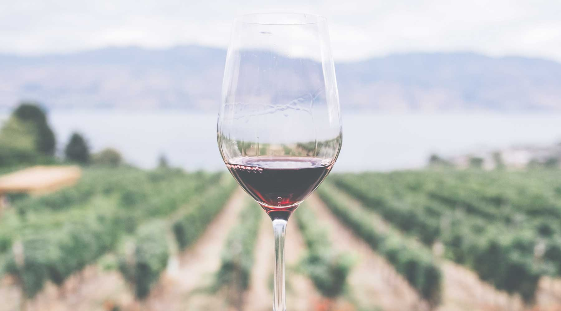 Somm Selections: Wonderful Wines of the Okanagan Valley in Canada | Just Wine