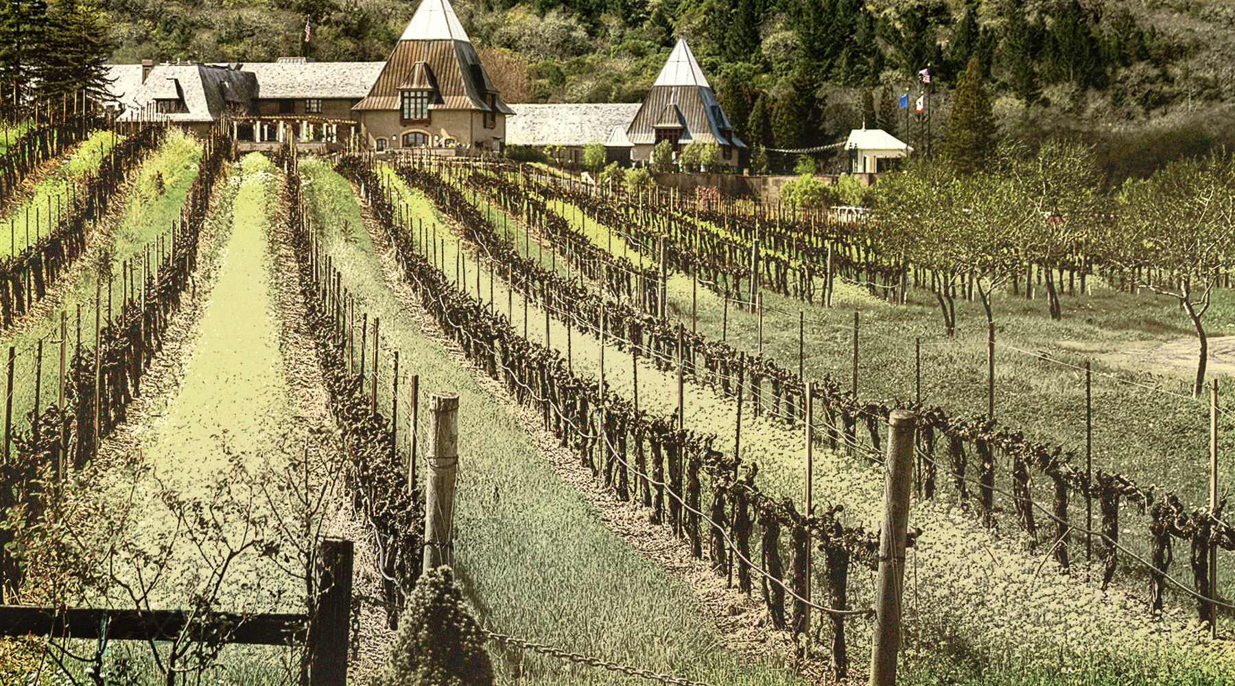 Francis Ford Coppola Winery   Just Wine