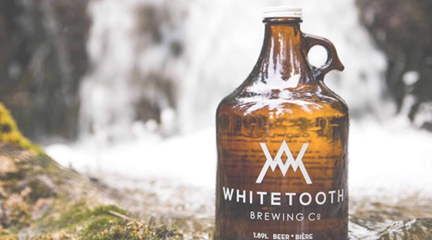 Whitetooth Brewing Co. | Just Wine