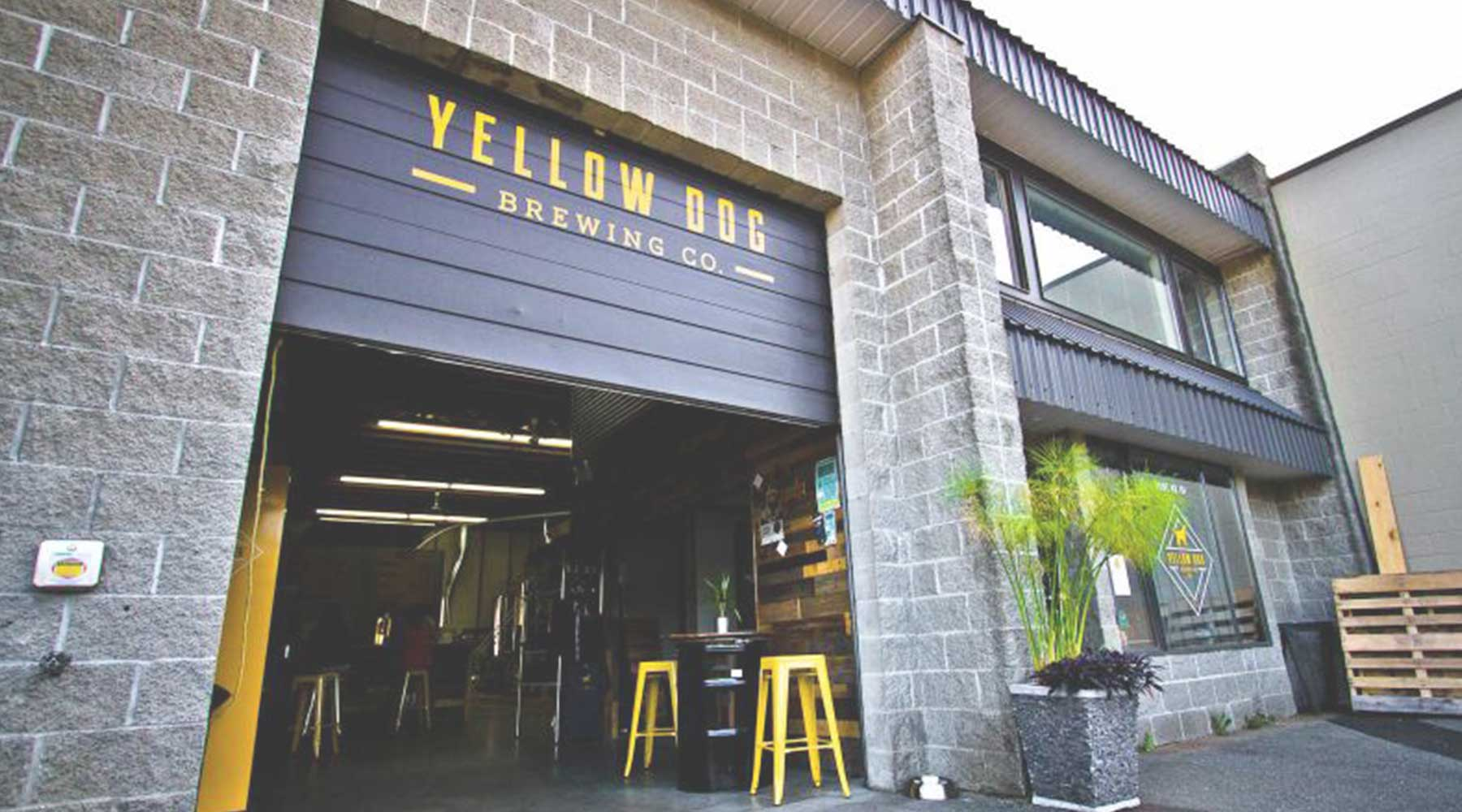 Yellow Dog Brewing Company | Just Wine