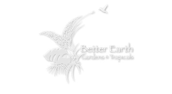 Better Earth Gardens & Tropicals | Just Wine