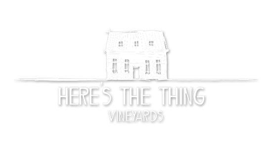 Here's The Thing Vineyards | Just Wine