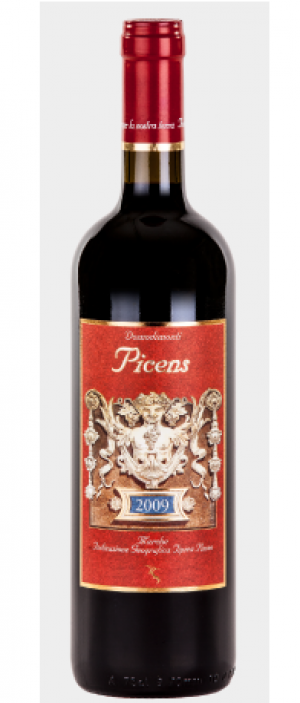 Domodimonti Picens 2009 | Red Wine