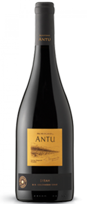 MontGras Antu Syrah | Red Wine