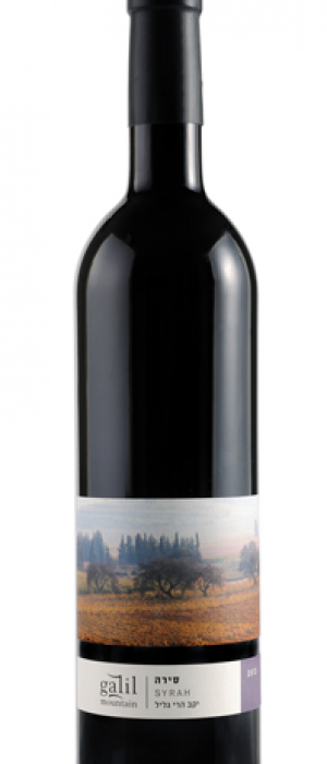 Galil Mountain Syrah | Red Wine