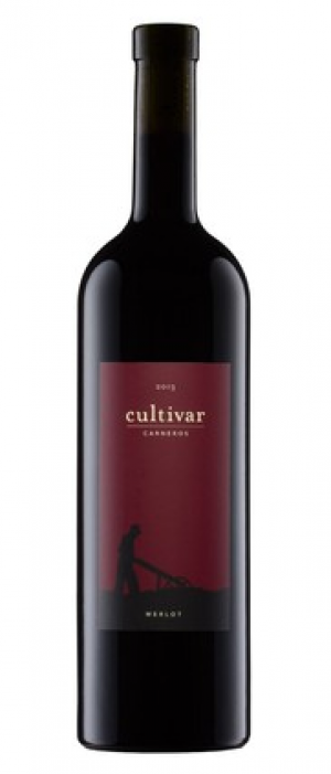 Cultivar Wine 2013 Carneros Merlot | Red Wine