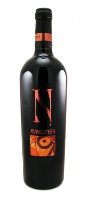 Numanthia 2005 Tinta de Toro | Red Wine