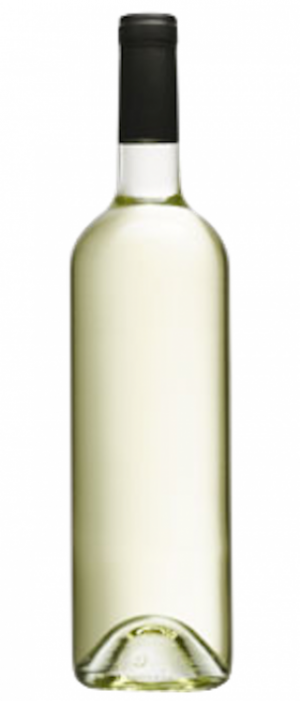 Reimer Vineyards Winery 2016 Dry Riesling Bottle