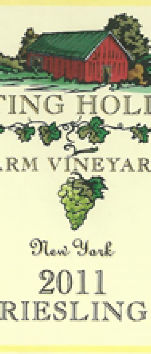 Baiting Hollow Farm Vineyard 2013 Riesling Bottle