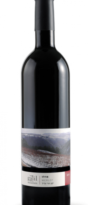 Galil Mountain Merlot | Red Wine