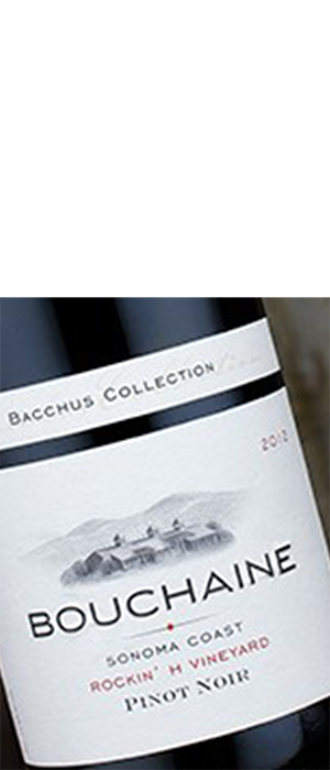 Bouchaine Rockin' H Vineyard Sonoma Coast Pinot Noir | Red Wine