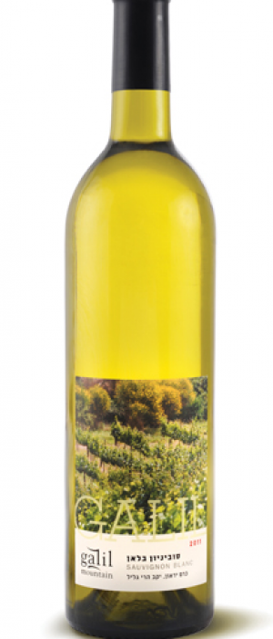 Galil Sauvignon Blanc | White Wine