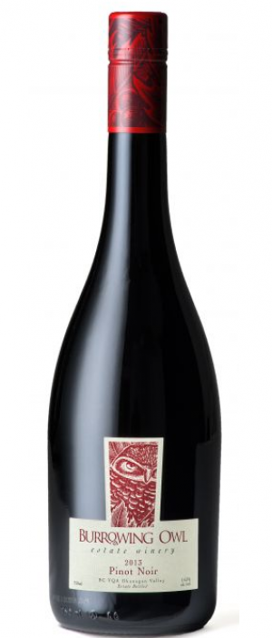 Burrowing Owl Estate Winery 2013 Pinot Noir | Red Wine