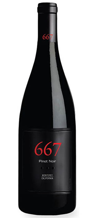Noble Vines 2012  Pinot Noir 667 Bottle