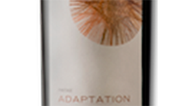 Adaptation Pinotage | Red Wine