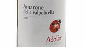 Amarone di Valpolicella | Red Wine