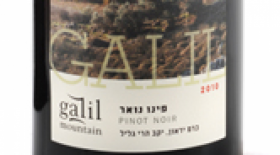 Galil Mountain Pinot Noir | Red Wine