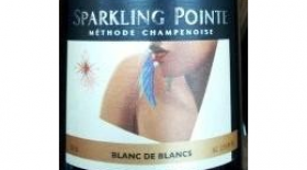 Sparkling Pointe 2010 Blanc de Blancs | White Wine