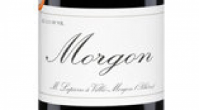 Marcel Lapierre Morgon 2016 | Red Wine
