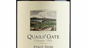 Quails' Gate Winery 2013 Pinot Noir | Red Wine