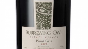 Burrowing Owl Estate Winery 2009 Pinot Gris (Grigio) Label